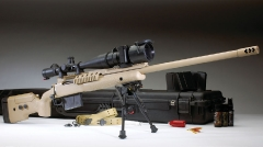Bolt action sniper/Tactical rifles_6