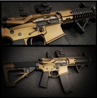 Ar-15 tactcial group_6