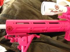 Custom pink ar-15_3